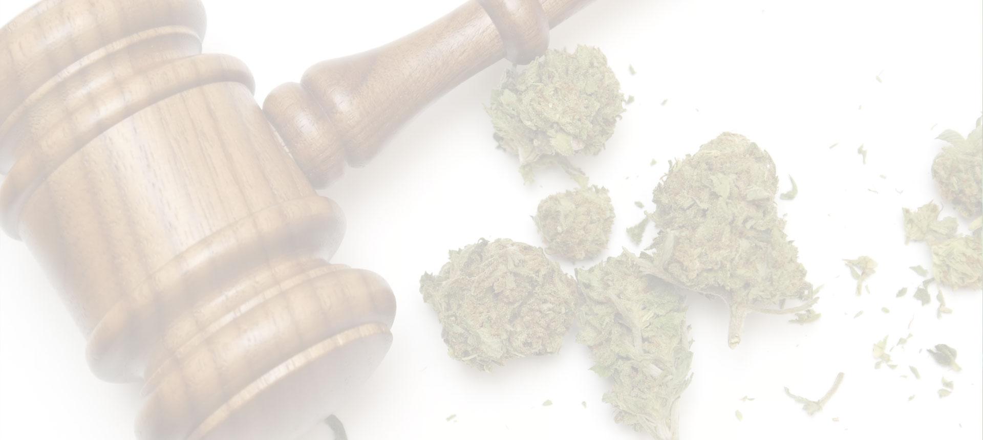 Cannabis et législation