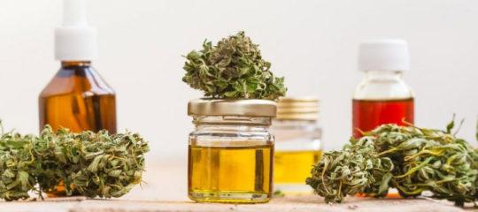 En quoi sert le cannabis thérapeutique